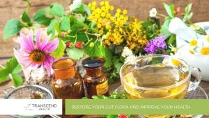 Restore Your Gut Flora and Improve Your Health